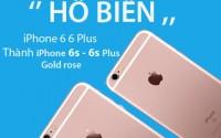 thay-vo-iphone-vang-hong-hcm