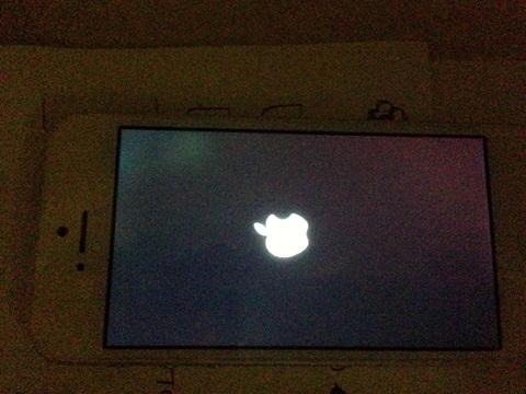 màn hình bị hở sáng
