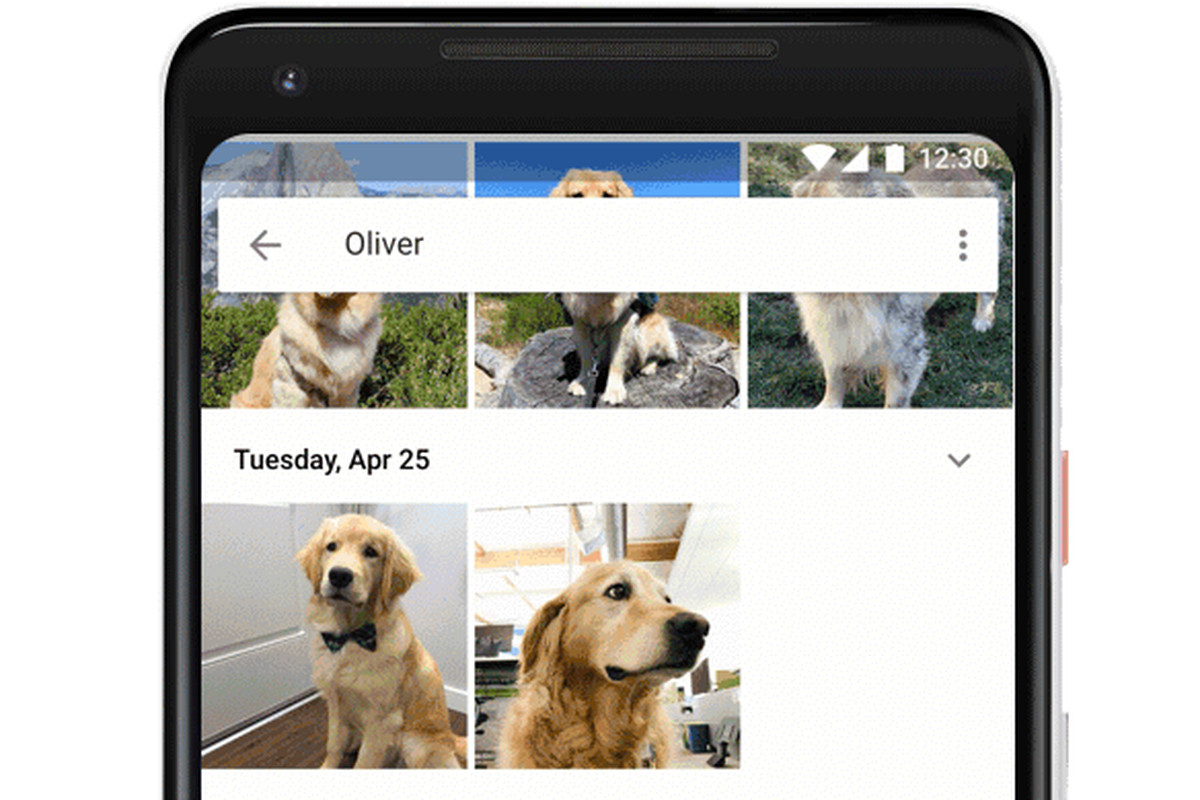 google-photos-pets-1