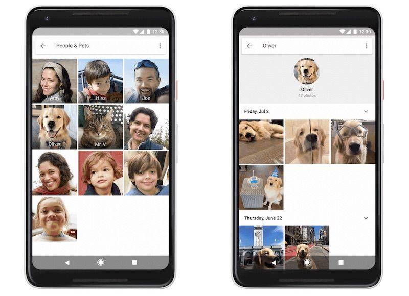 google-photos-pets-2