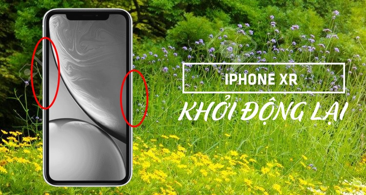 Huong Dan Cach Khac Phuc Man Hinh Iphone Xr Bi Toi Den 02